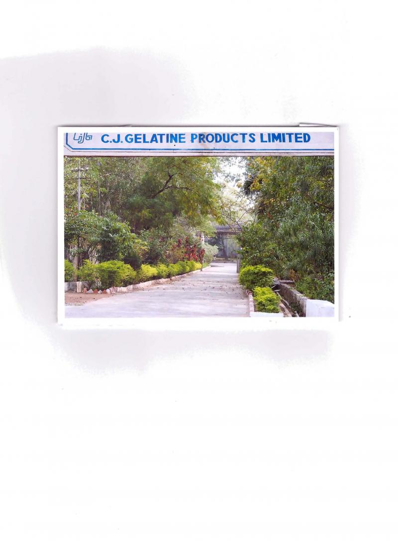C J GELATINE PRODUCTS LIMITED - Home
